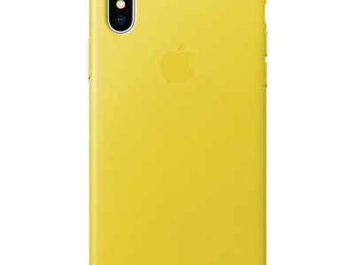 Apple iPhone X Leather Back Cover Lentegeel